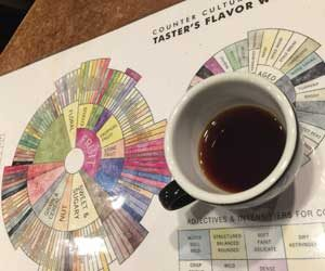 Cupping flavor chart