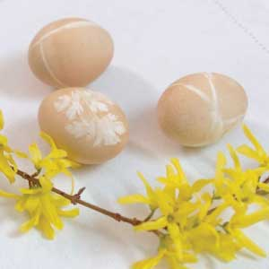 Coffee Dyed Eggs show grass and flower patterns in white on pretty tan egg with forsythia blooming branches