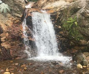 Natural springs and waterfalls provide irrigation for many agricultural crops and increase coffee quality and yield.