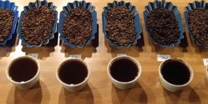 coffee tasting notes come from coffee cupping